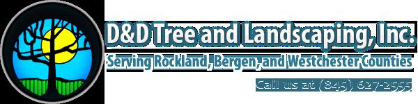 D&D Tree and Landscape