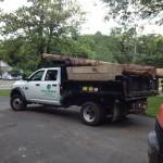 Bergen County NJ tree removal