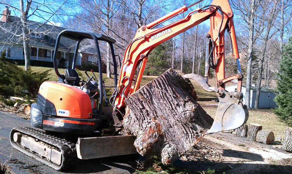 Tree Service Companies Nj D Amp D Tree And Landscape